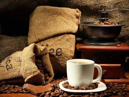 Všetko o káve